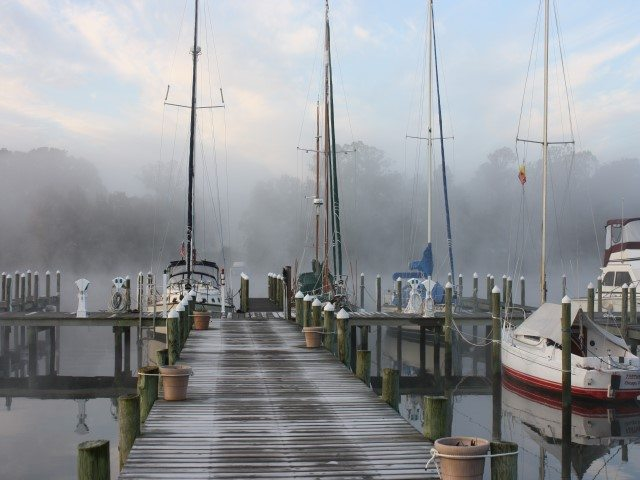 'Foggy Morning at Carters Cove Marina