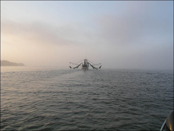 Following shrimper out in the fog