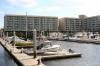 Harbourgate Marina