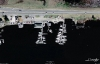 Pelican Marina - Google Earth