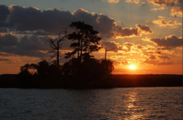 Photo of the Week – Neuse River, NC