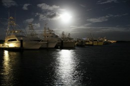 Shared Photo – Hunter's Moon, Old Port Cove Marina