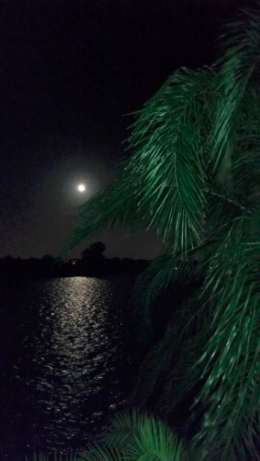 Shared Photo: Moon Over the Manatee River