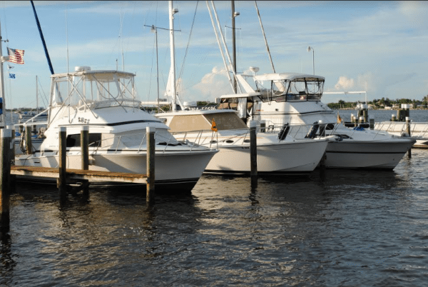 CCCC Members Boats Docked at Moss Marine